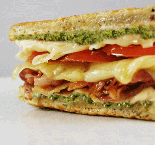 Try our Paninis